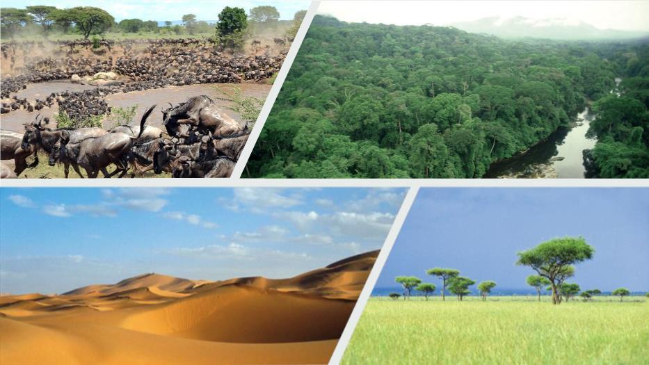 世界地理第八章第三节《撒哈拉以南的非洲》教学PPT讲稿