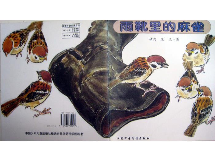 绘本故事:雨靴里的麻雀(优)